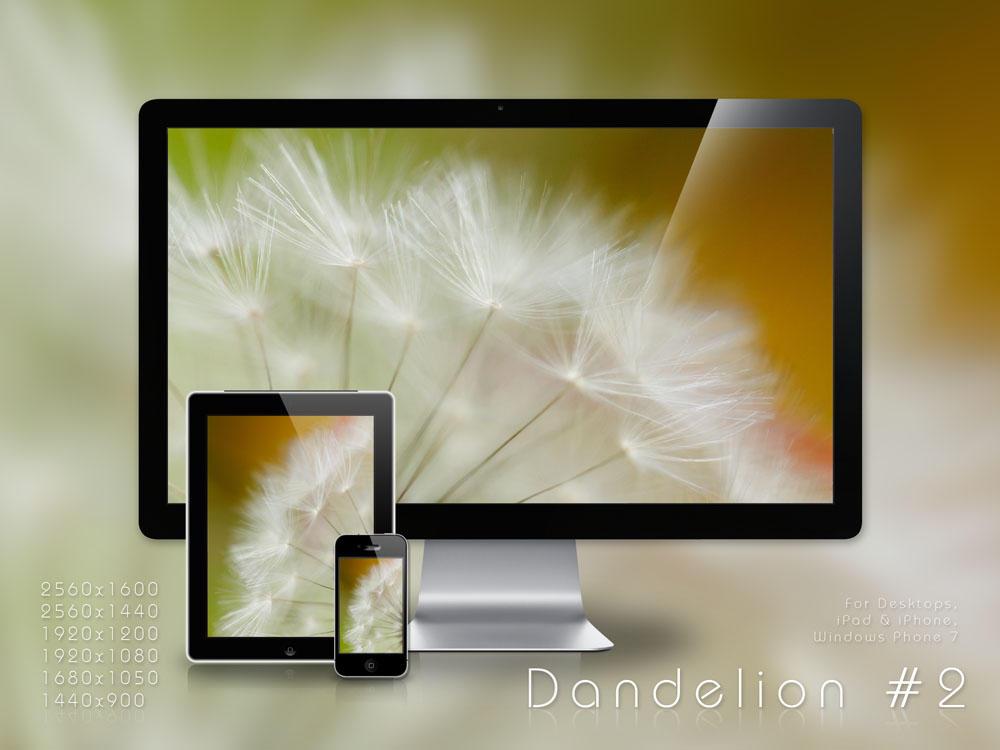 .: Dandelion 2  .  WP Set :. by jon-rista