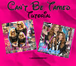 Cant Be Tamed Blend Tutorial