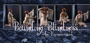 Bounding Blindness