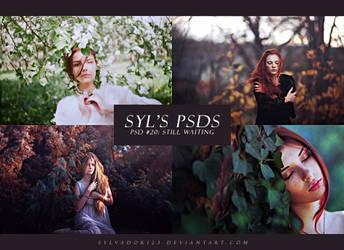 PSD #20 - Still Waiting by sylvador123