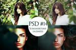 PSD #14 - Summertime Sadness