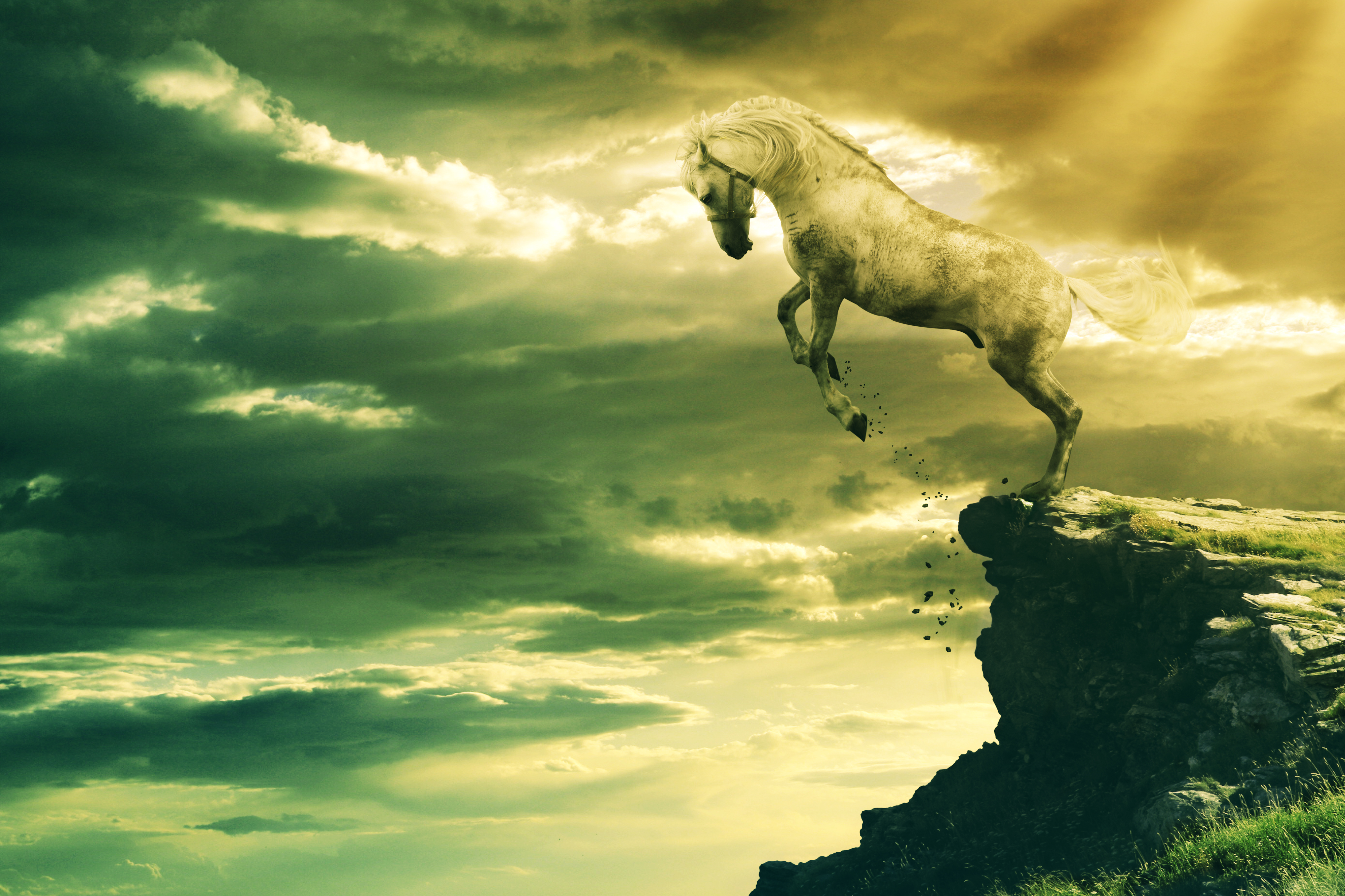 Leaping Stallion + .PSD by PSHoudini