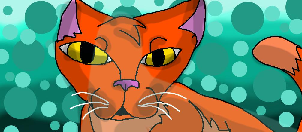 Derpy cat by Warriorcatsgeeks
