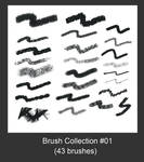 My Brush Collection