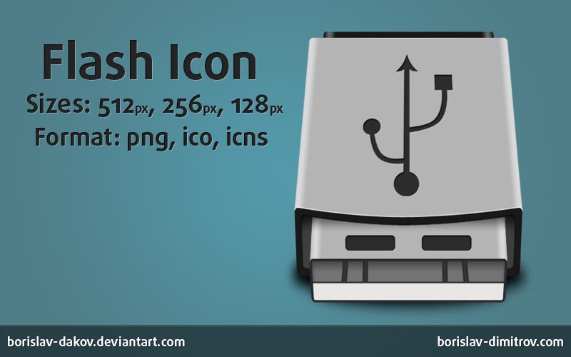 Flash Icon by borislav-dakov