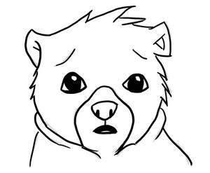 Bear Face Transition