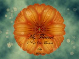 My Flowers by maiarcita