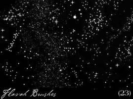 n0ir brushes 03 by eXitParis