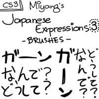 japanese expressions 3 by miyang