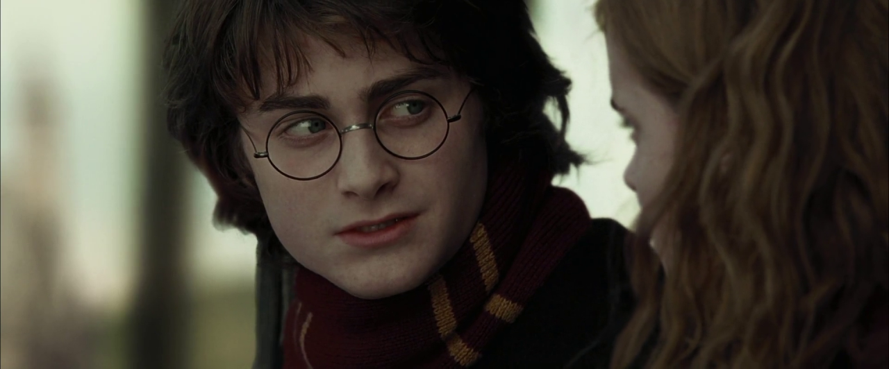 Harry potter and the goblet of fire torrent