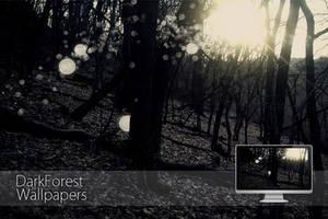dark forest by othum