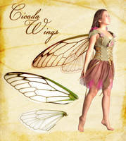 Cicada Wings stock by chronicdoodler