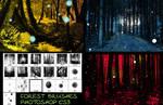 Sous bois - Forest