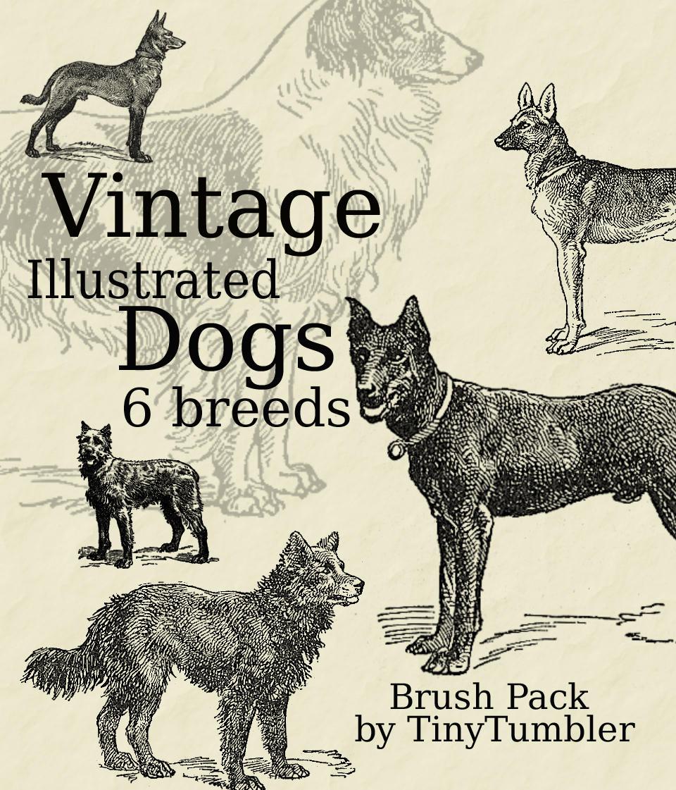 Vintage Illust. Dogs Brushpack by TinyTumbler