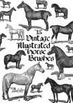 Vintage Horses Brushpack