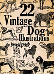 22 Vintage Dog Illustrations Brushpack