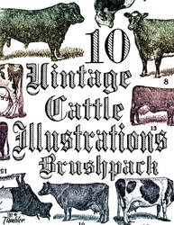 10 Vintage Cattle Illustrations Brushpack
