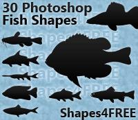 30 Photoshop Fish Shapes
