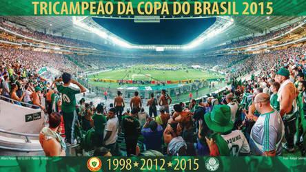 Poster Palmeiras Tricampeao da Copa do Brasil 2015 by Panico747
