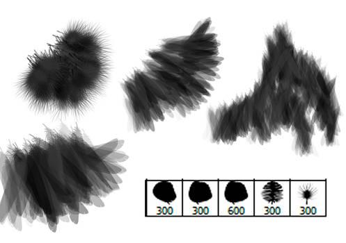 Bird Feather Brushes