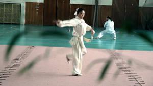 2nd Europe International Chinese Wushu Festival