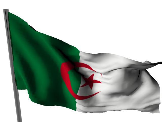 Drapeau Algerien by maalem31
