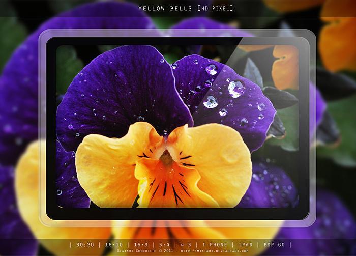 YELLOW BELLS by MIATARI