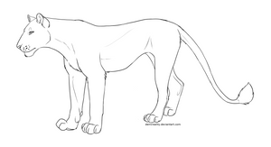 Free Lioness Lineart (png+paint update)