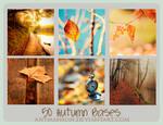 Icon Bases:Autumn