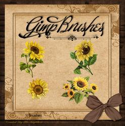 GIMP Brushes | Sunflower Brushes by TheAngeldove