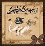 GIMP Brushes   Swan Brushes