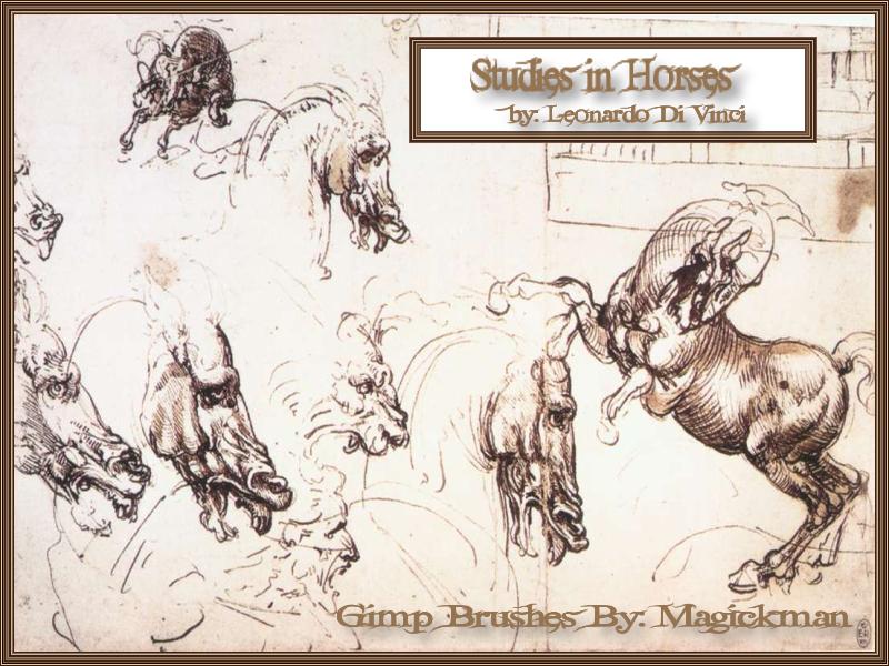 Studies In Horses-di vinci by blueeyedmagickman
