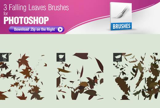 3 Falling Leaves Brushes
