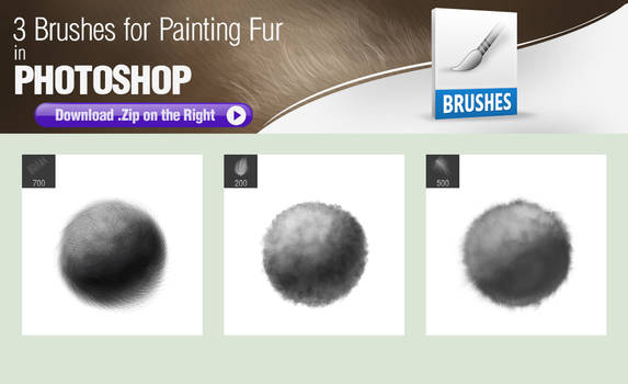 3 Photoshop Brushes for Painting Fur Texture