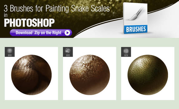 Photoshop Brushes for Painting Snake Scales