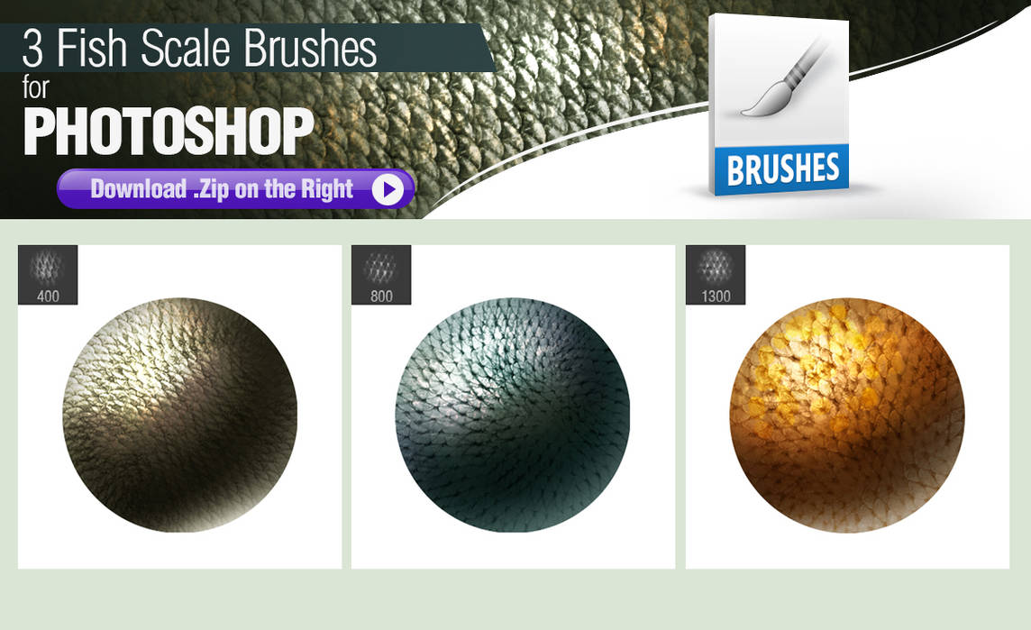 3 Photoshop Brushes for Painting Fish Scales by pixelstains on