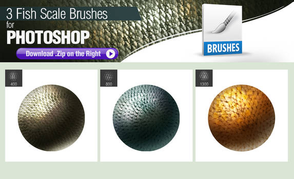 3 Photoshop Brushes for Painting Fish Scales