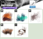 5 Dry Brushes for Photoshop