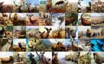 Animal and Nature Stock - Mammals