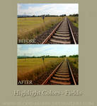 Highlight Colors-Fields Action
