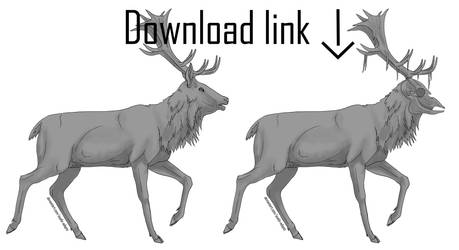 Free Deer Lineart (with shading)
