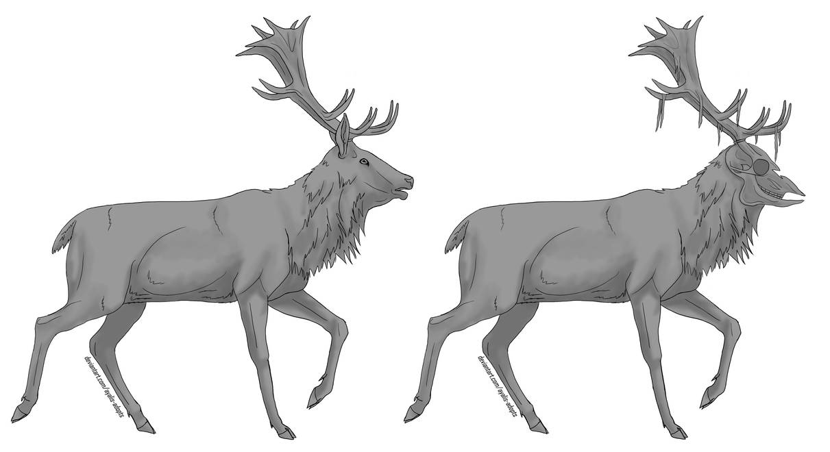 Free Deer Lineart (with greyscale)