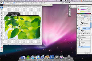 Folder Template Tutorial Video by sp3ctrm5tr