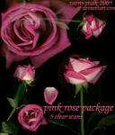 pink rose package
