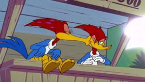 Woody Woodpecker - Woody Watcher