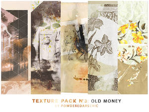 Texture Pack 3 Old Money