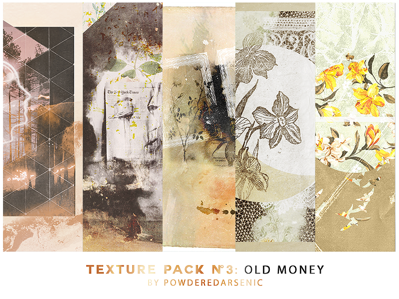 https://orig04.deviantart.net/c158/f/2014/362/9/9/texture_pack_3_old_money_by_powderedarsenic-d8bnd2a.png