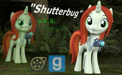 [DL] Enhanced Shutterbug by Pika-Robo