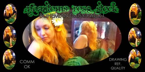 Bohemian Daisy Pack I