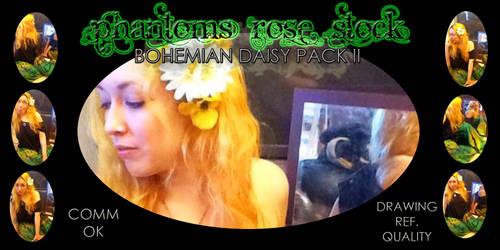 Bohemian Daisy Pack II